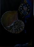 Nautilus mit Uhr